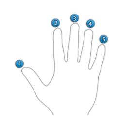 Posição dos dedos da mão direita